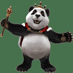 Enjoy more than 1000 casino games at Royal Panda Casino India