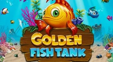 Golden Fish Tank Review